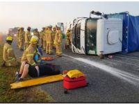 Un toro en la Ruta 2 provocó un triple choque