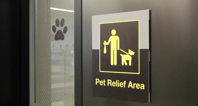 Aeropuerto JFK de Nueva York estrena sanitario para mascotas
