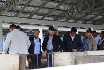 Danilo visita productores cerdos y pollos de Bonao