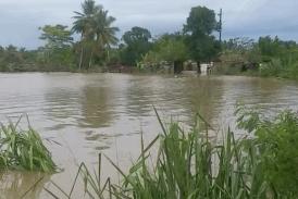 La Vega: el río Camú arrastra todo a su paso y hay más de 100 viviendas inundadas