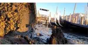 Sequía en Venecia.