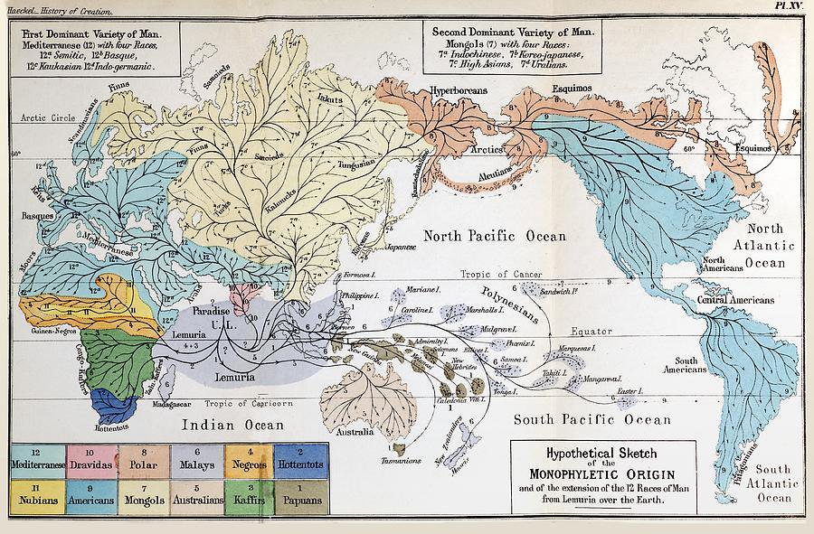 Haeckel Lemuria Map