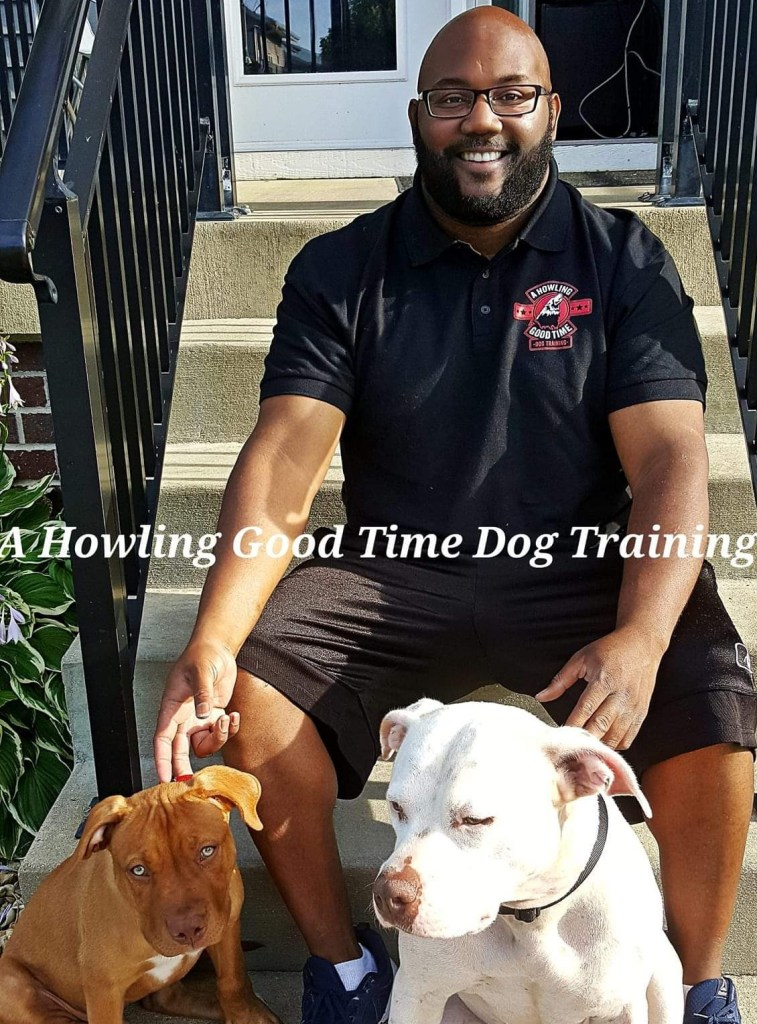 Dog & Puppy training For Madison WI.
