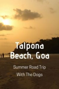 Road Trip with Dogs to Talpona Beach Goa