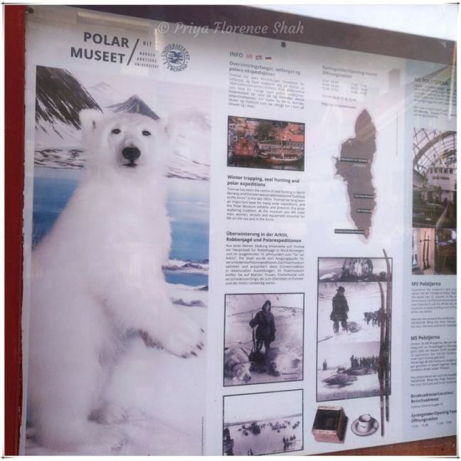The Polar Museet is all about winter trapping, seal hunting and polar expeditions