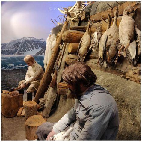 Scenes of life in the Arctic