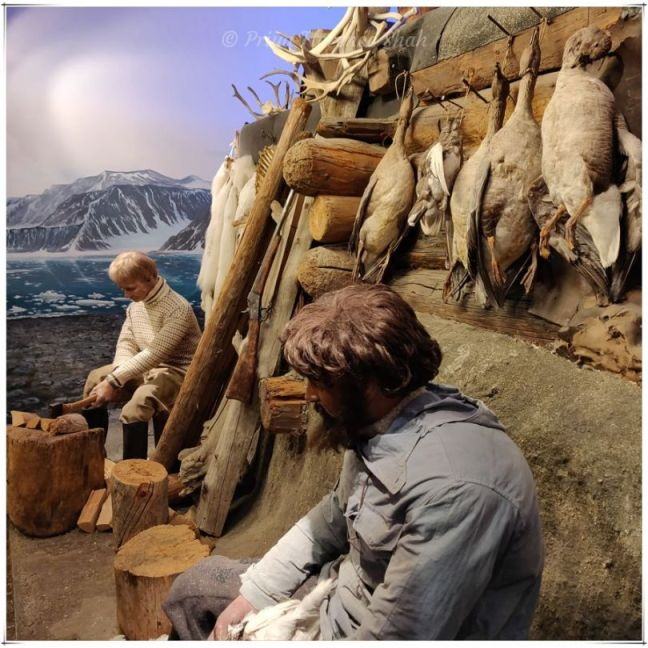 Scenes of life in the Arctic