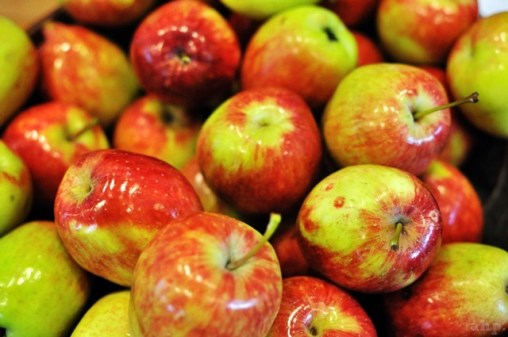 Apples from Malang