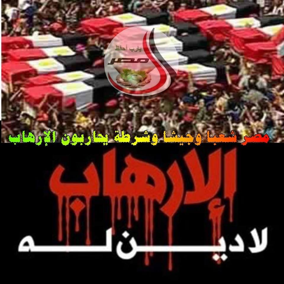 مصر شعبا وجيشا وشرطة يحاربون الإرهاب