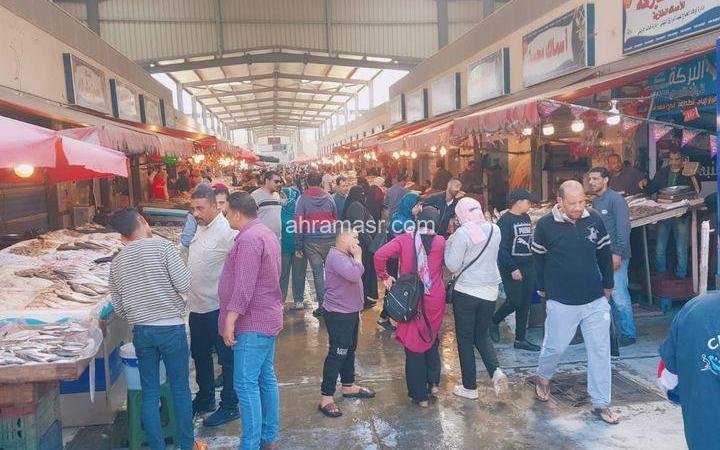 سياحة اليوم الواحد بمحافظة بورسعيد تشهد توافد الرحلات السياحية من مختلف المحافظات