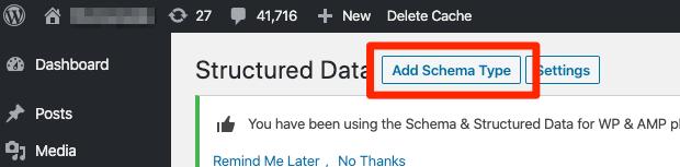 add schema type button 1
