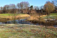 Enten im Ahrensburger Schlosspark – Foto: Mia