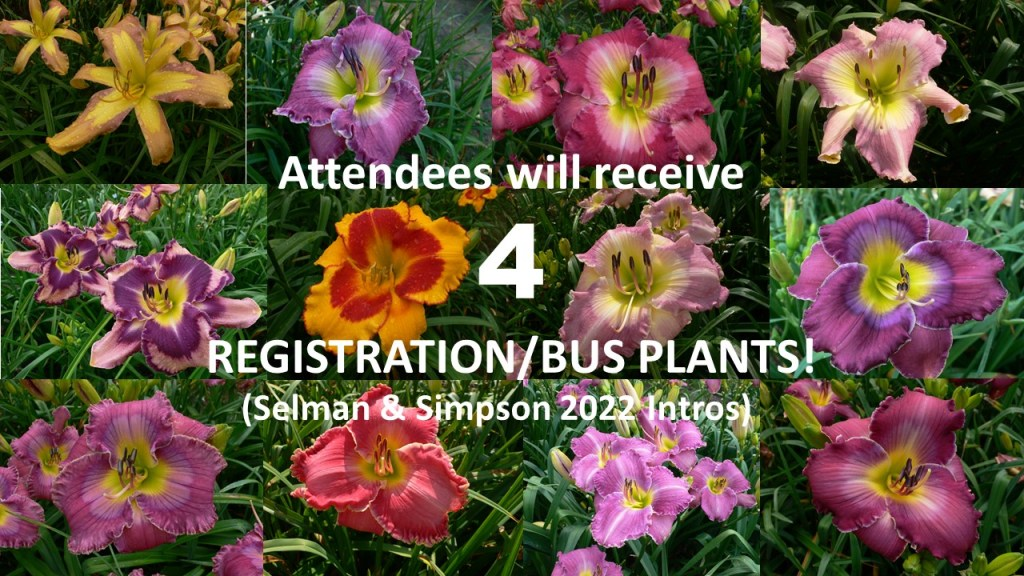 Each attendee will receive 4 registration or bus plants, which will all be Selman and Simpson 2022 introductions.