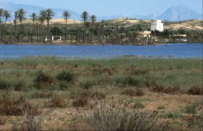 Fondet de la Senyeta inundado