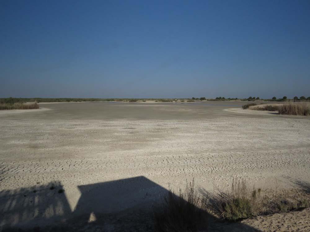 charca del Rincón seco