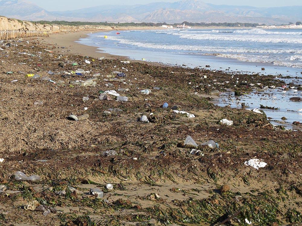 Playa de los Tosales sembrada de basura tras los últimos temporales del mes de diciembre (S. Arroyo)