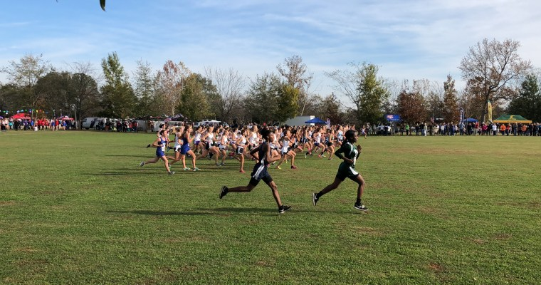 State Cross Country Results