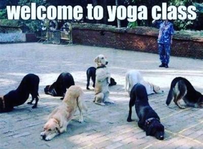 Welcome To Yoga Class Meme Ahseeit