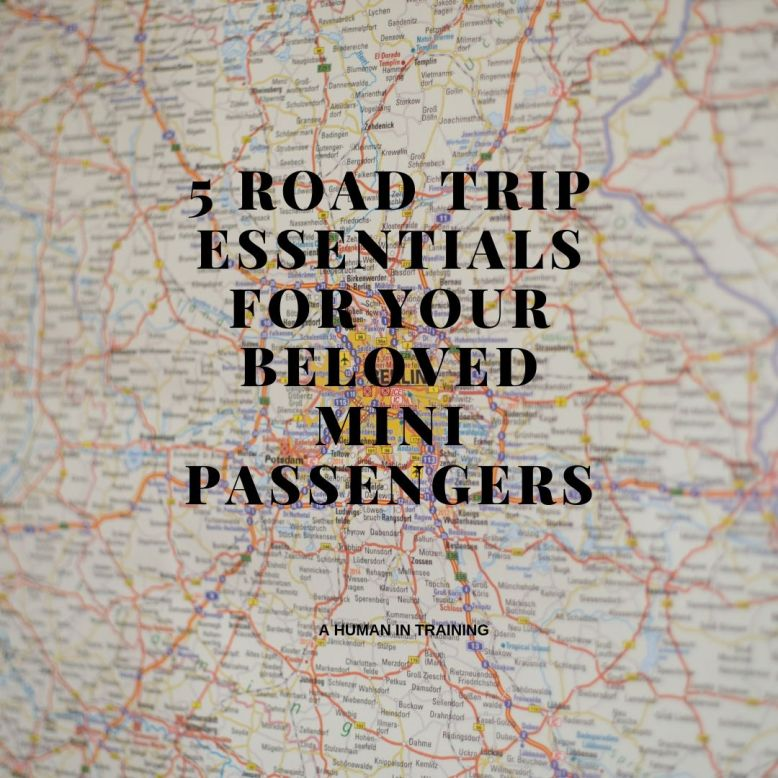 5 Road Trip Essentials For Your Beloved Mini Passengers