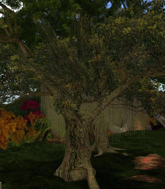 A Straylight tree