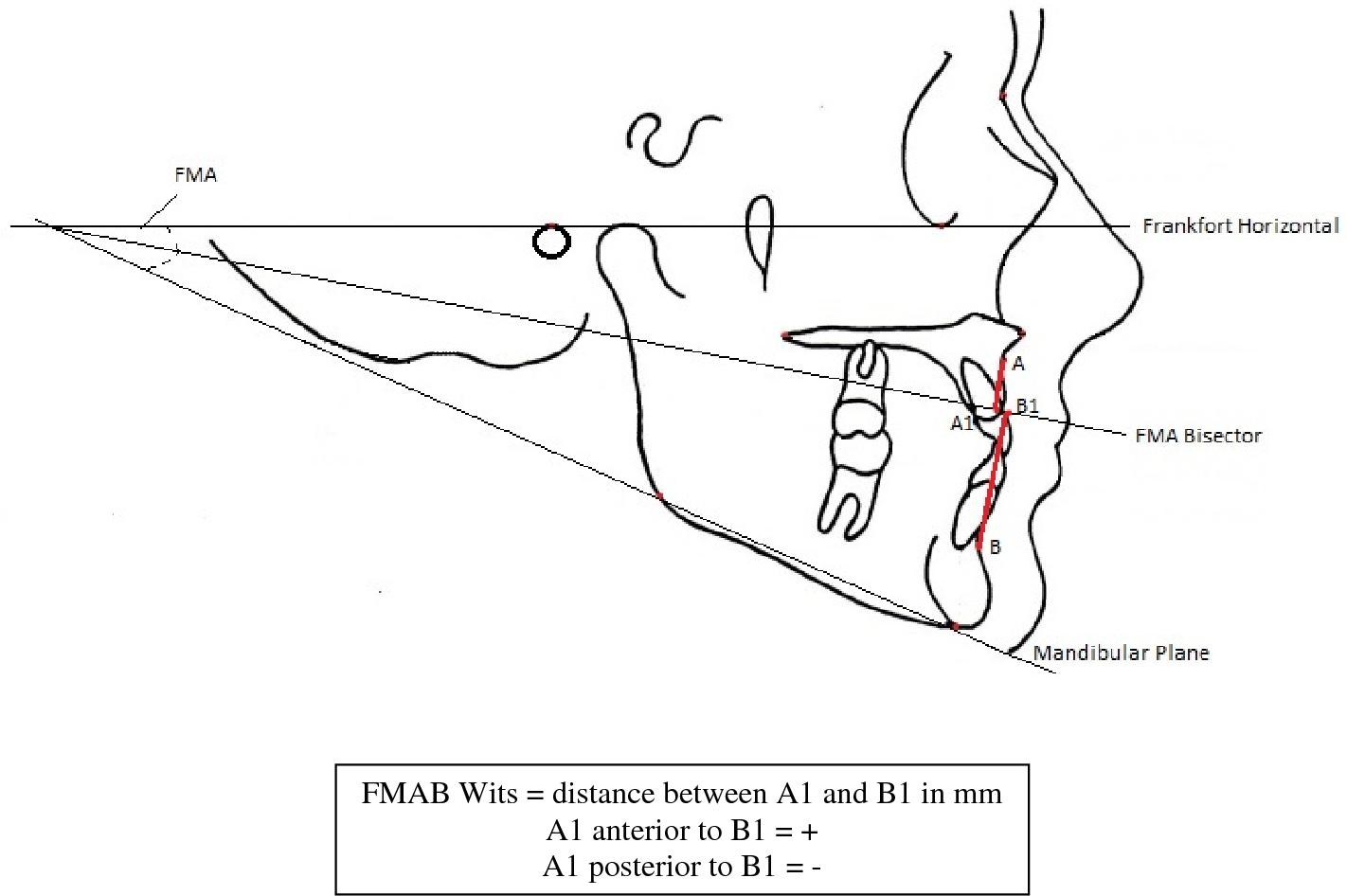 6 orbital