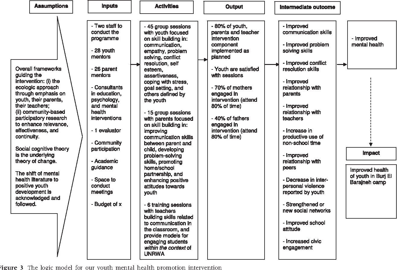 Figure 3 From Developing A Logic Model For Youth Mental
