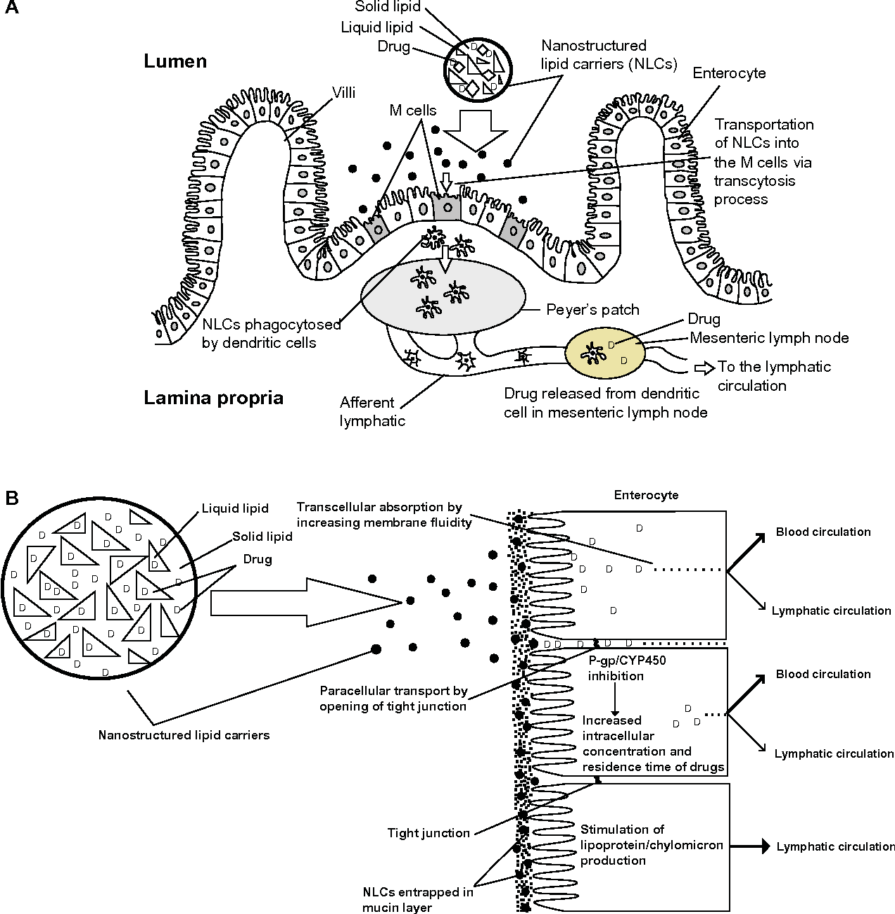 Figure 1 From Advanced Drug Delivery To The Lymphatic