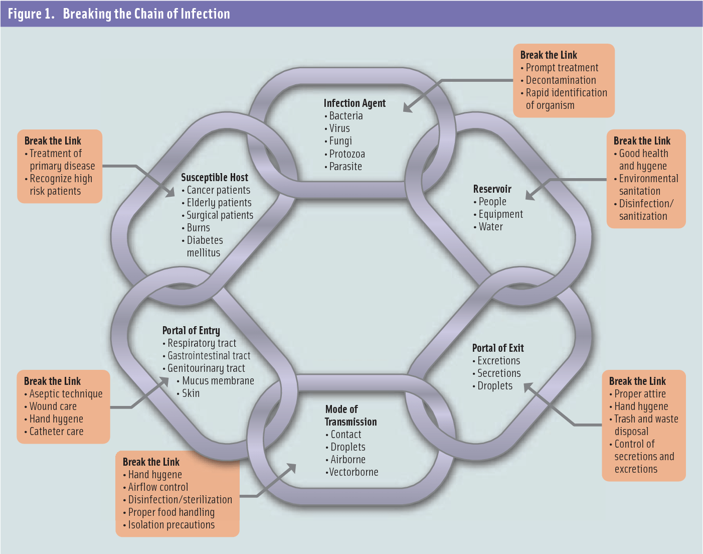Figure 1 From Management And Prevention Of Infection In
