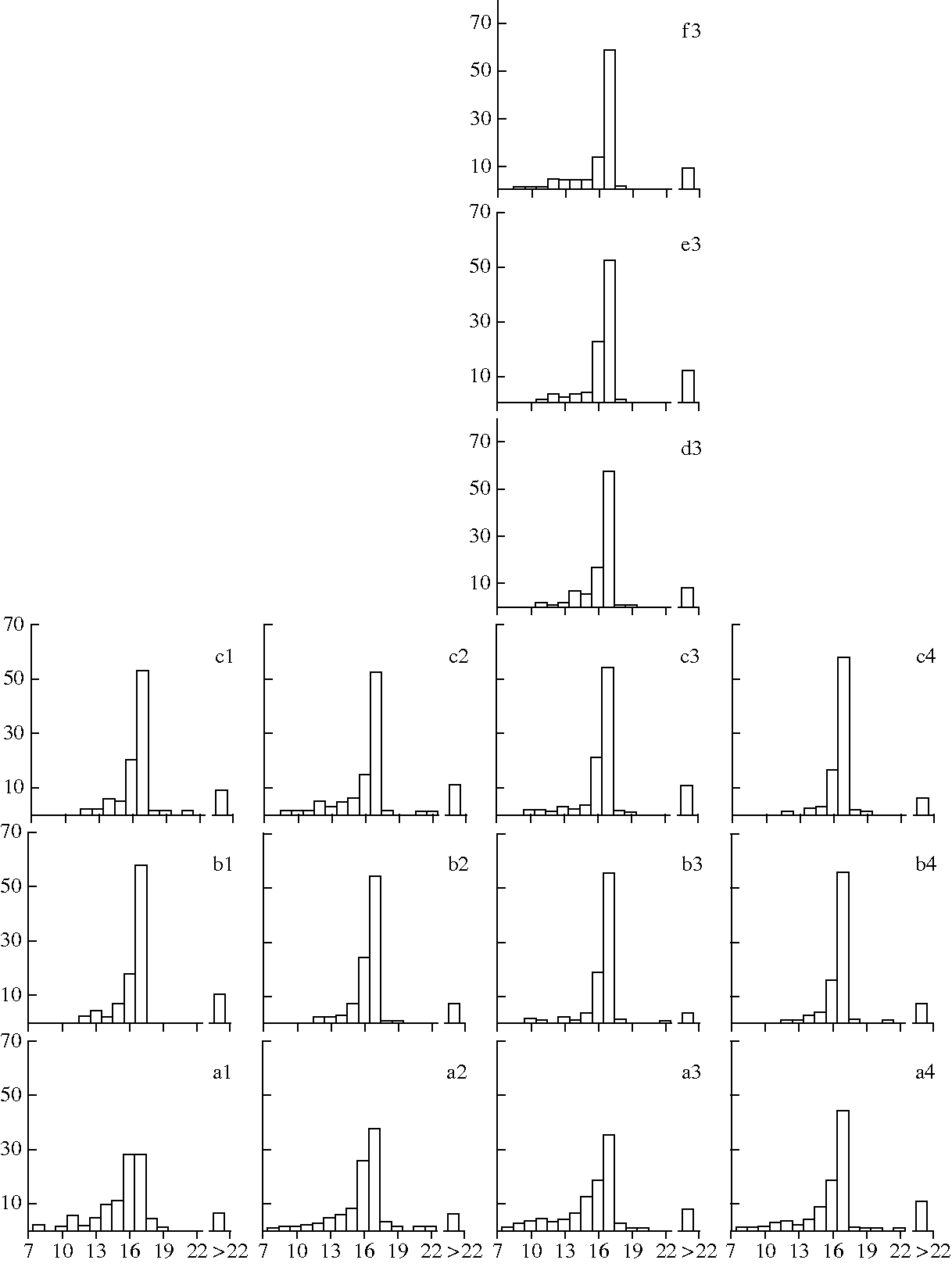 Food Chain Diagram Simple
