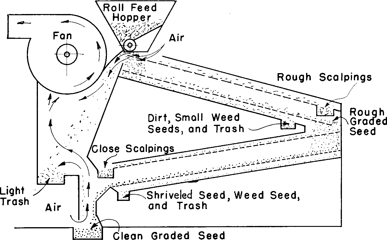 Figure 2 From Mechanical Seed Cleaning And Handling