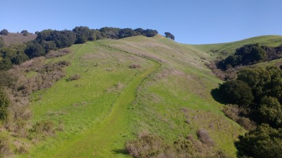 The tree cover will drop after a bit, leaving you to see the path meander along the rolling hills.