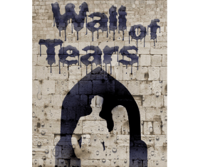 Coming Soon: Wall of Tears, an 'Extraordinary Book' on the Israel – Palestine Conflict.