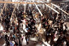 Reconstitution d'une tribu perdue Ernest Breleur Installation radiographies, photographies, agrafes, nylon – 2003 – dimensions variables– photo Jean-Philippe Breleur