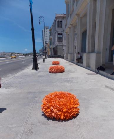 Detras del muro, Malecon, plus de cinquante oeuvres dans l'espace public, Photo Lucy Garcia