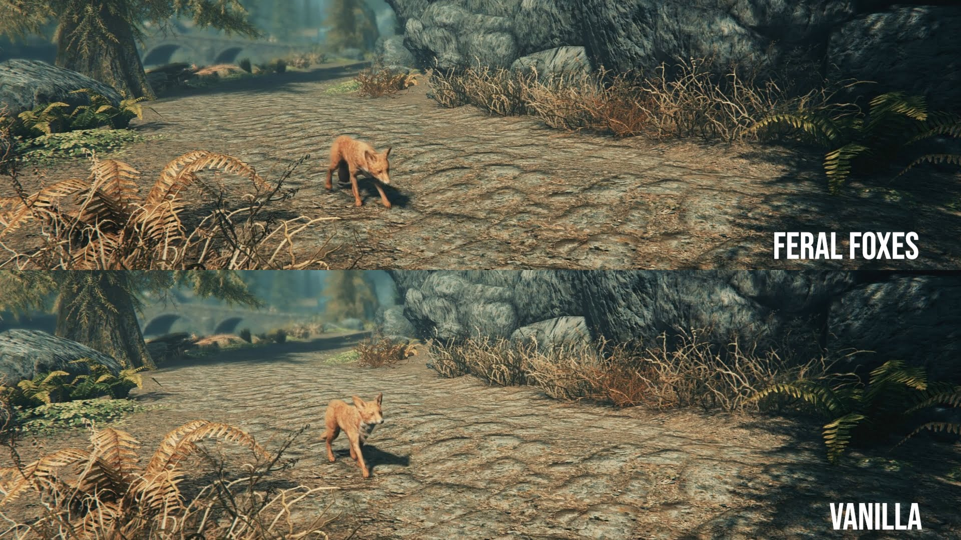 Feral Foxes & Savage Wolves   Skyrim & Special Edition