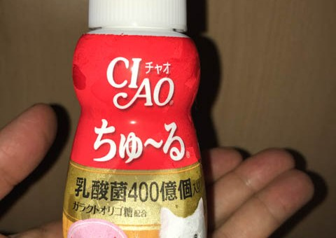 CIAO 乳酸菌 ちゅーる