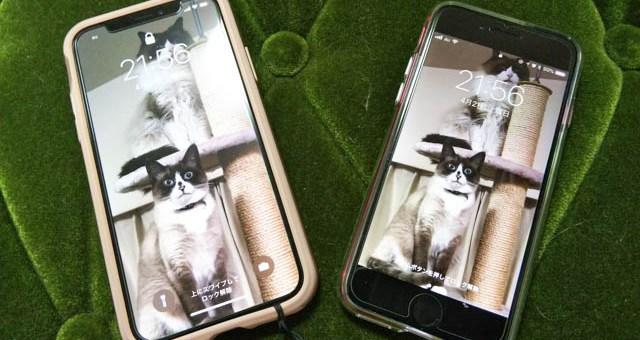 iPhone XとiPhone 8、併用して2週間