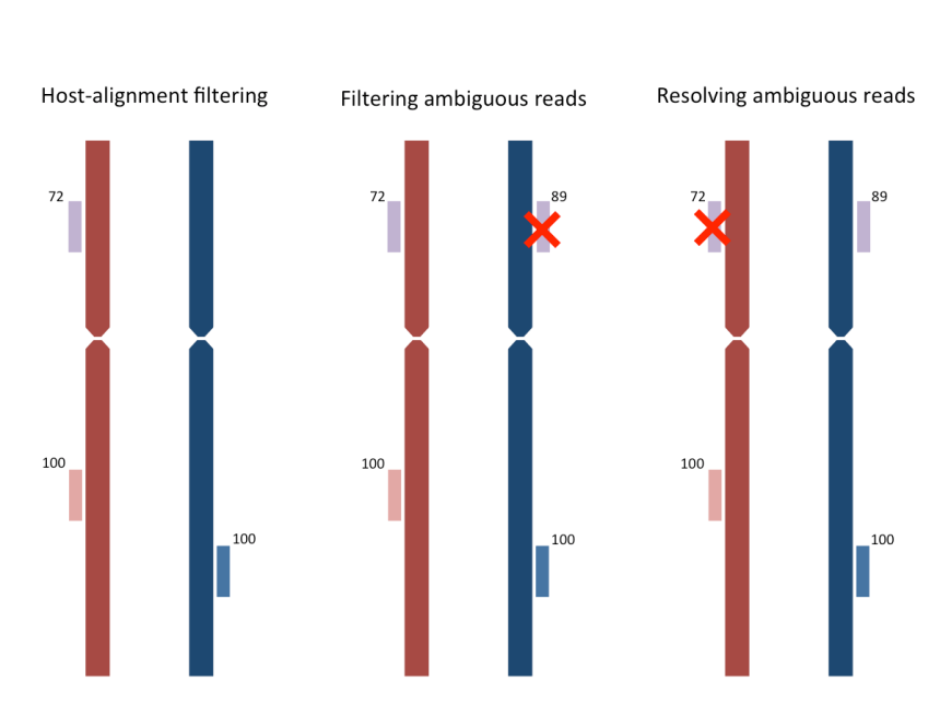 Three approaches to resolving ambiguously aligned reads