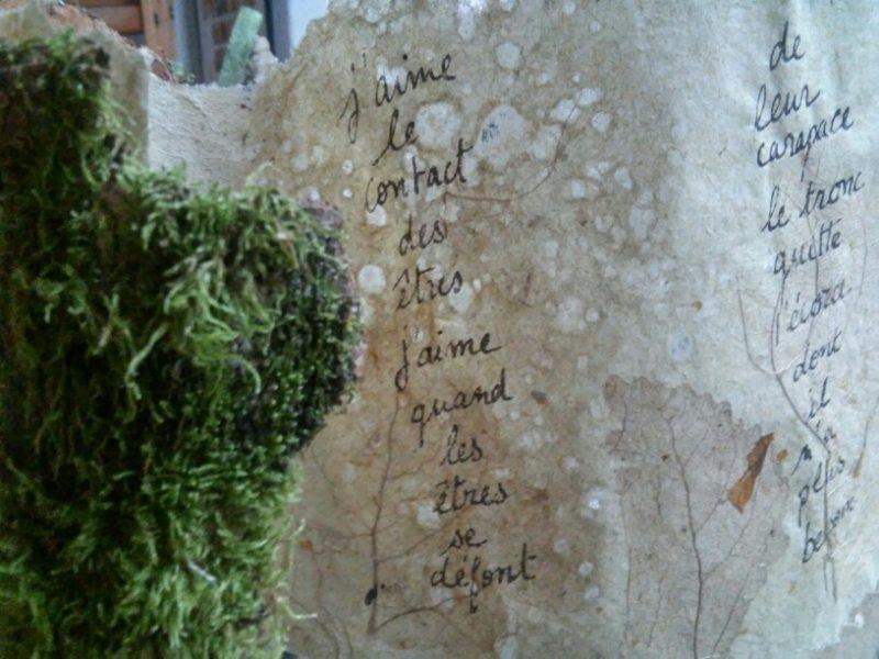 livre objet en papier végétal