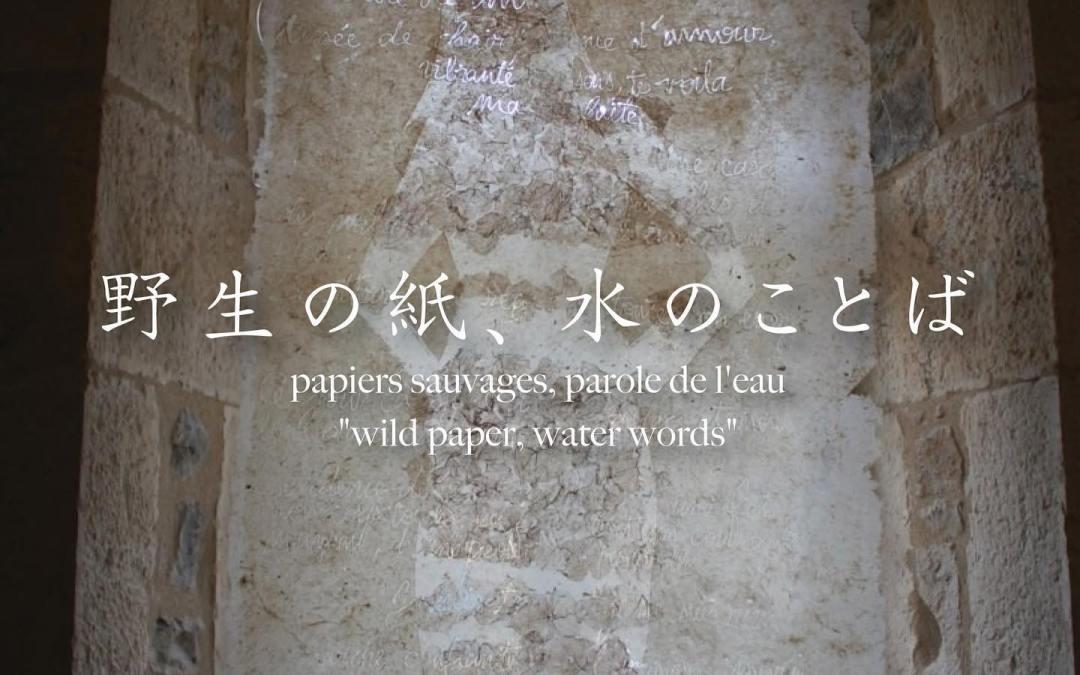 Papiers sauvages, parole de l'eau