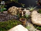 Detalhe da fonte de bambu.