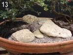 As pedras no jardim japonês tem a conotação de eternidade. Nós temos que ter a magia de tentar imaginar o tamanho todo que a pedra possui, como a pota de um iceberg.