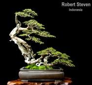 robertstven-styled-tree