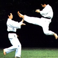 Karate05-15-15