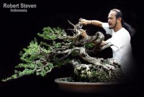 robert-steven