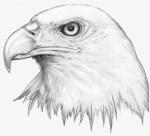 Eagles_Eye_by_H3LLB0uND