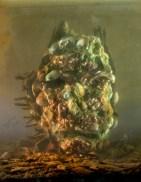 54058-shell-man-58b-30x24-45x36-2011