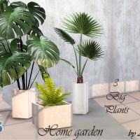 Home Garden 2021.