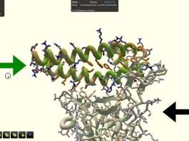 game-coronavirus