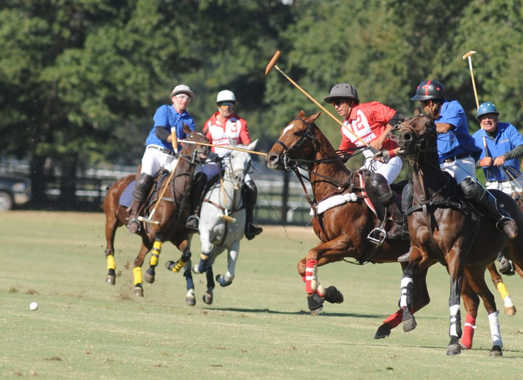Polo Action at Aiken Polo Club